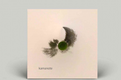 Alessandro-Arrigo-cover-art-for-kamanote-album